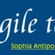 Agile Tour Sophia-Antipolis – 1er décembre 2015
